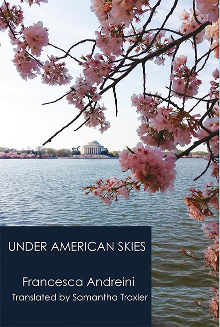 UNDER AMERICAN SKIES